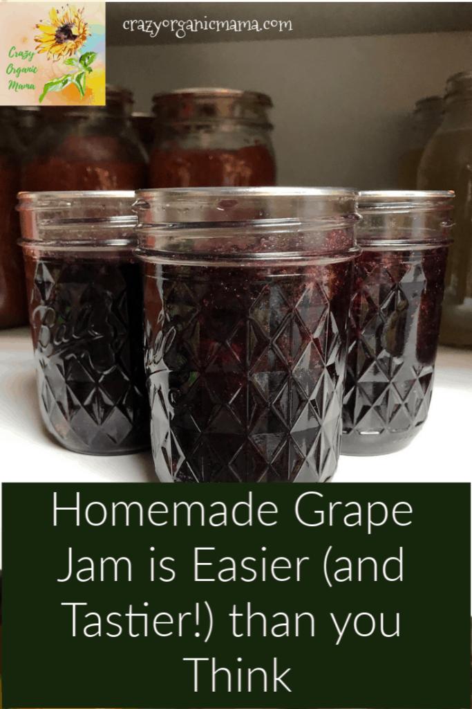 Concord grape jelly in jars