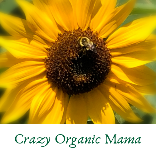 Crazy Organic Mama