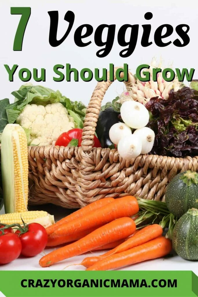 Veggies to grow pin 1