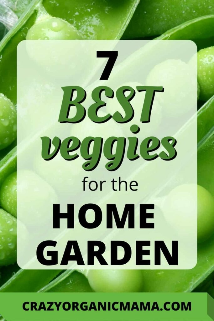 veggies to grow pin 2