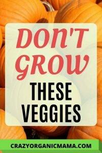 Don't grow these veggies pin 2